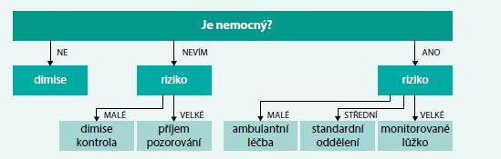Schéma 1. Rozhodovací algoritmus o přijetí/nepřijetí nemocného do nemocniční péče