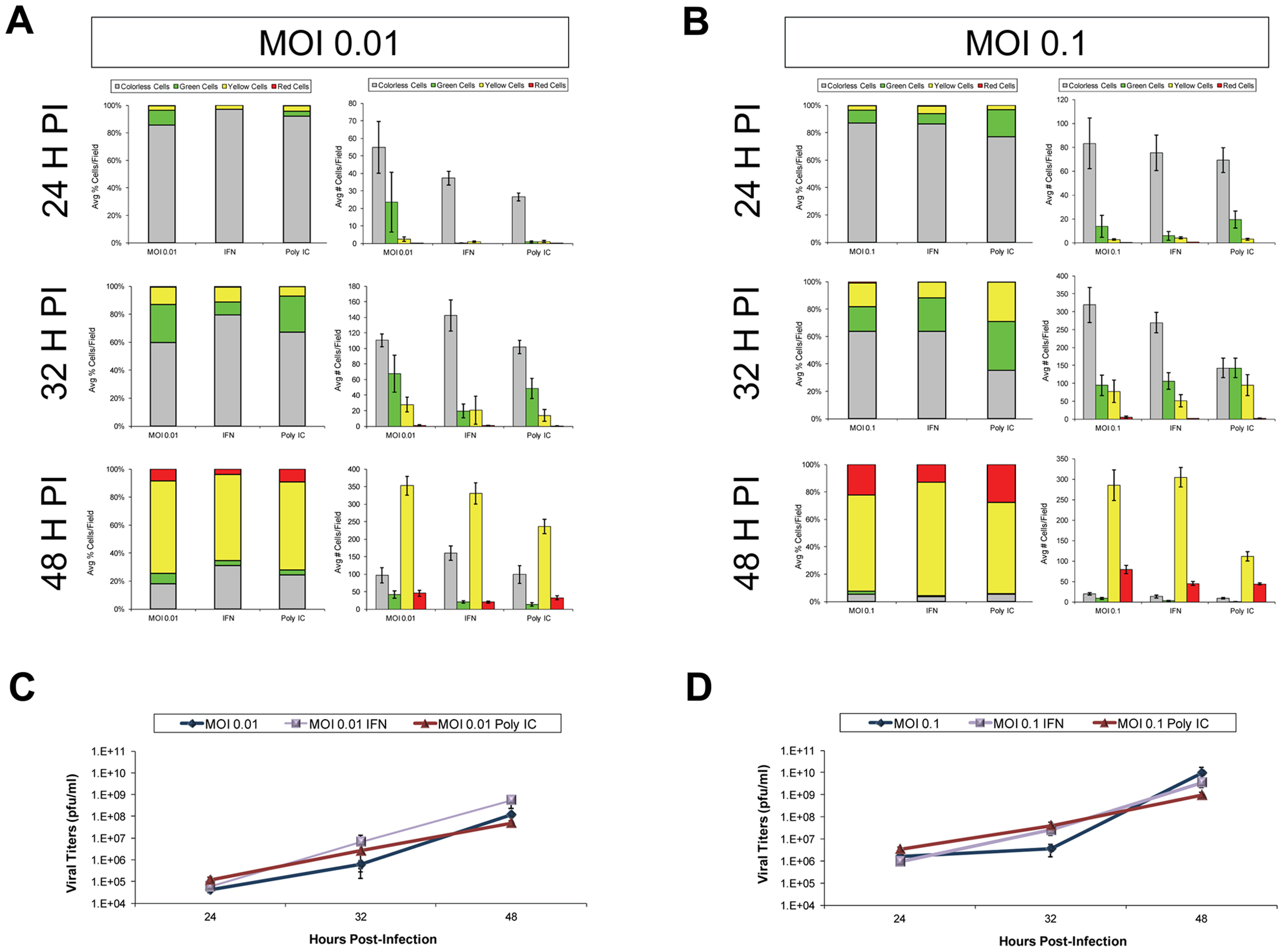 IFN-β or poly IC treatment restricted the progression of Timer-CVB3 infection in HeLa cells at low multiplicities of infection.