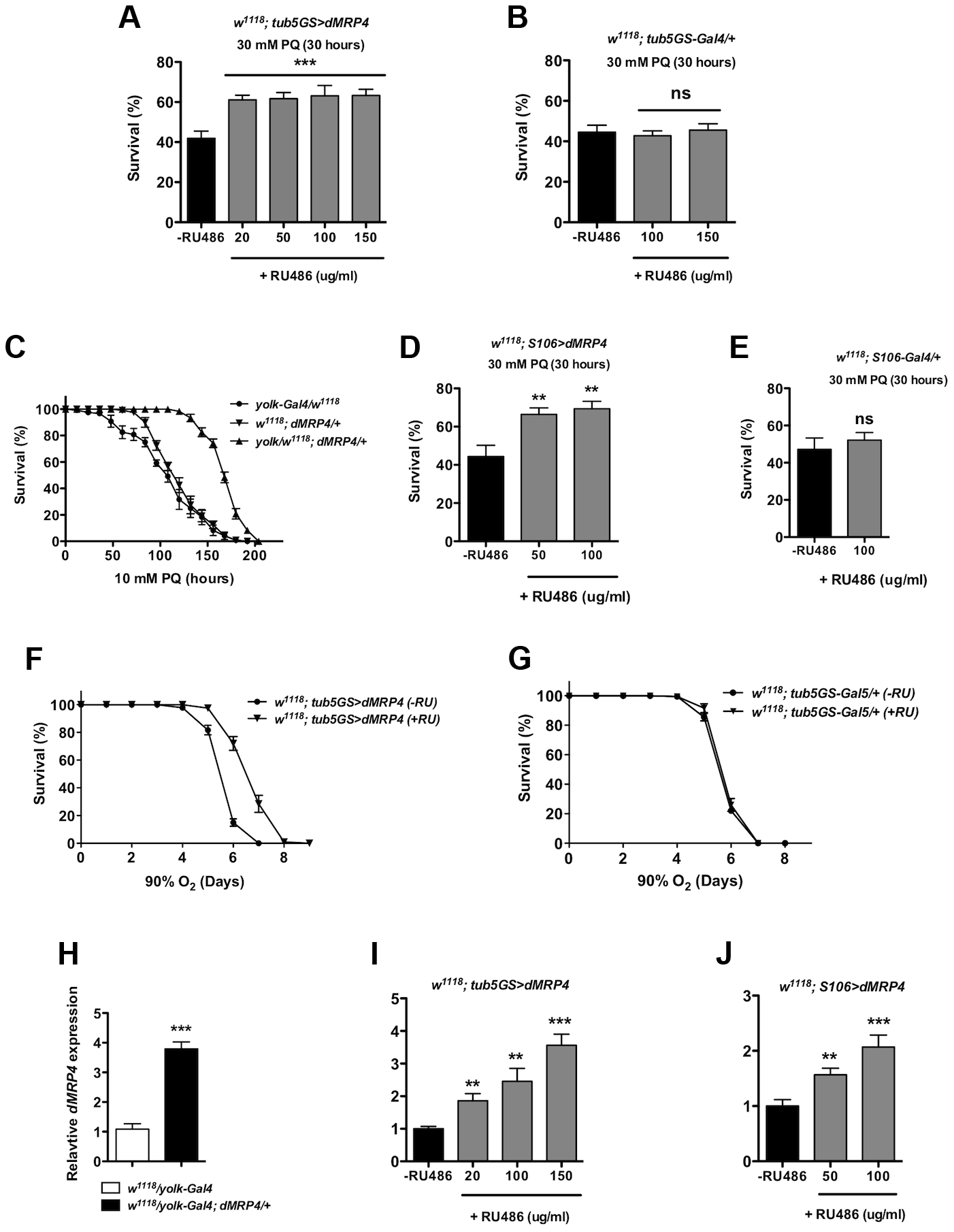Elevated <i>dMRP4</i> expression increases oxidative resistance.