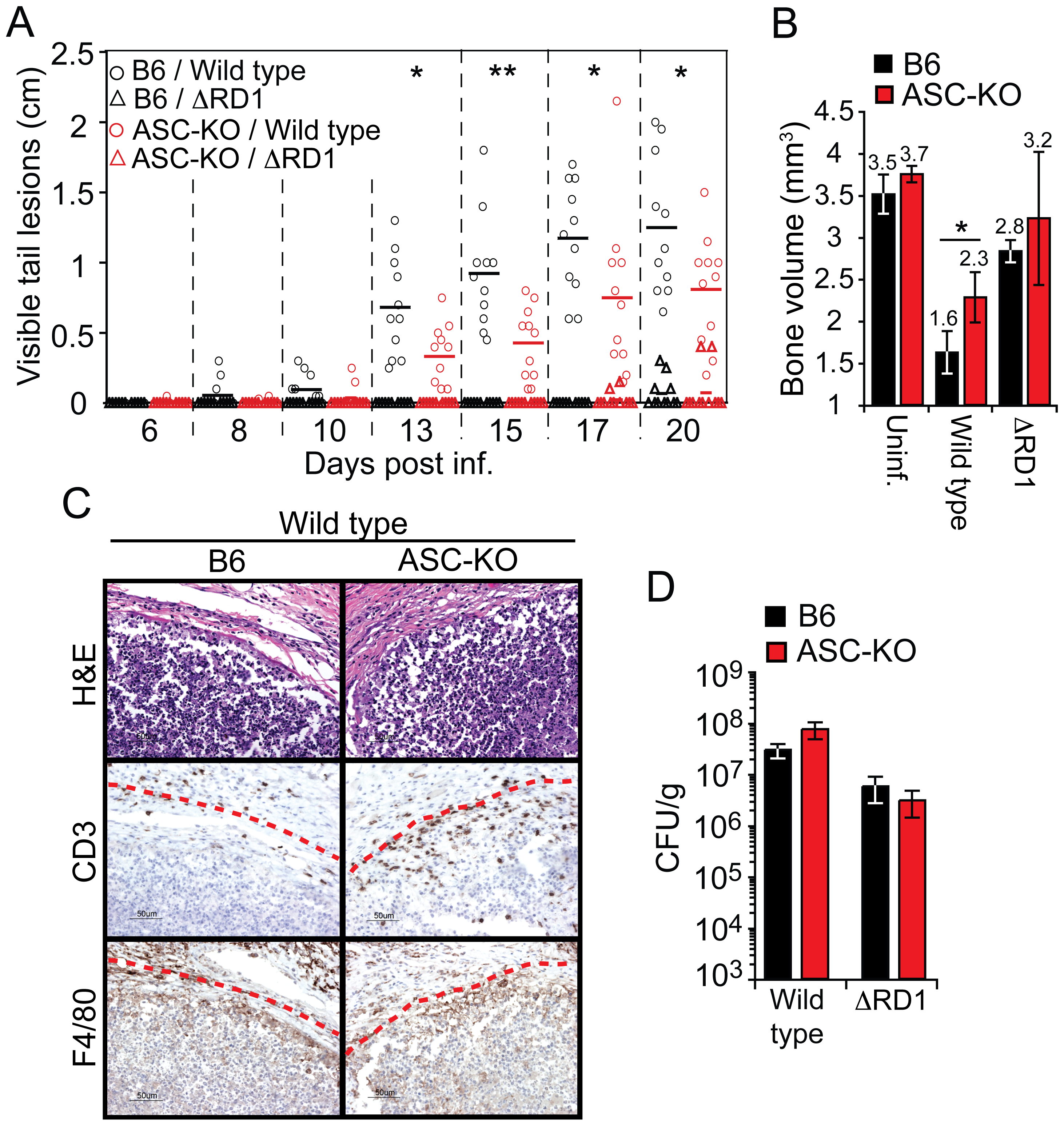Activation of the inflammasome exacerbates inflammation without restricting bacterial growth <i>in vivo</i>.