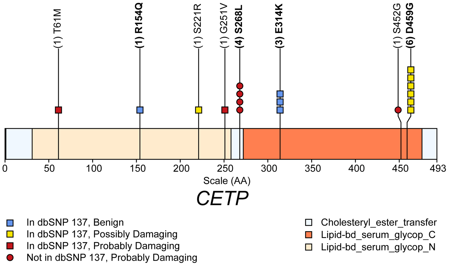 Schematic of rare (MAF<1%) non-synonymous variants used in the gene-level test HDL-C in gene <i>CETP</i>.