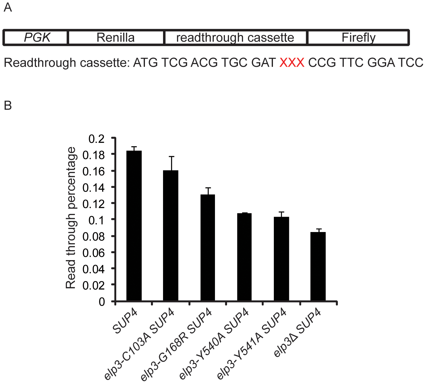 U<sub>34</sub> modification levels influence ochre stop codon read through by a suppressor tRNA.