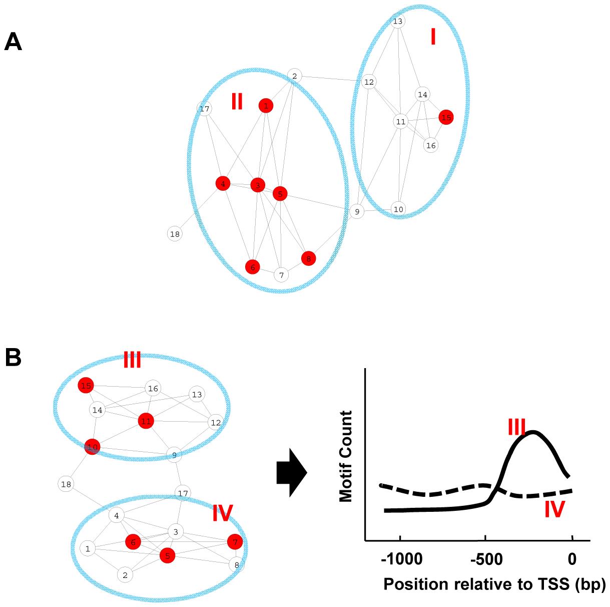 Motif enrichment and motif position bias analysis.