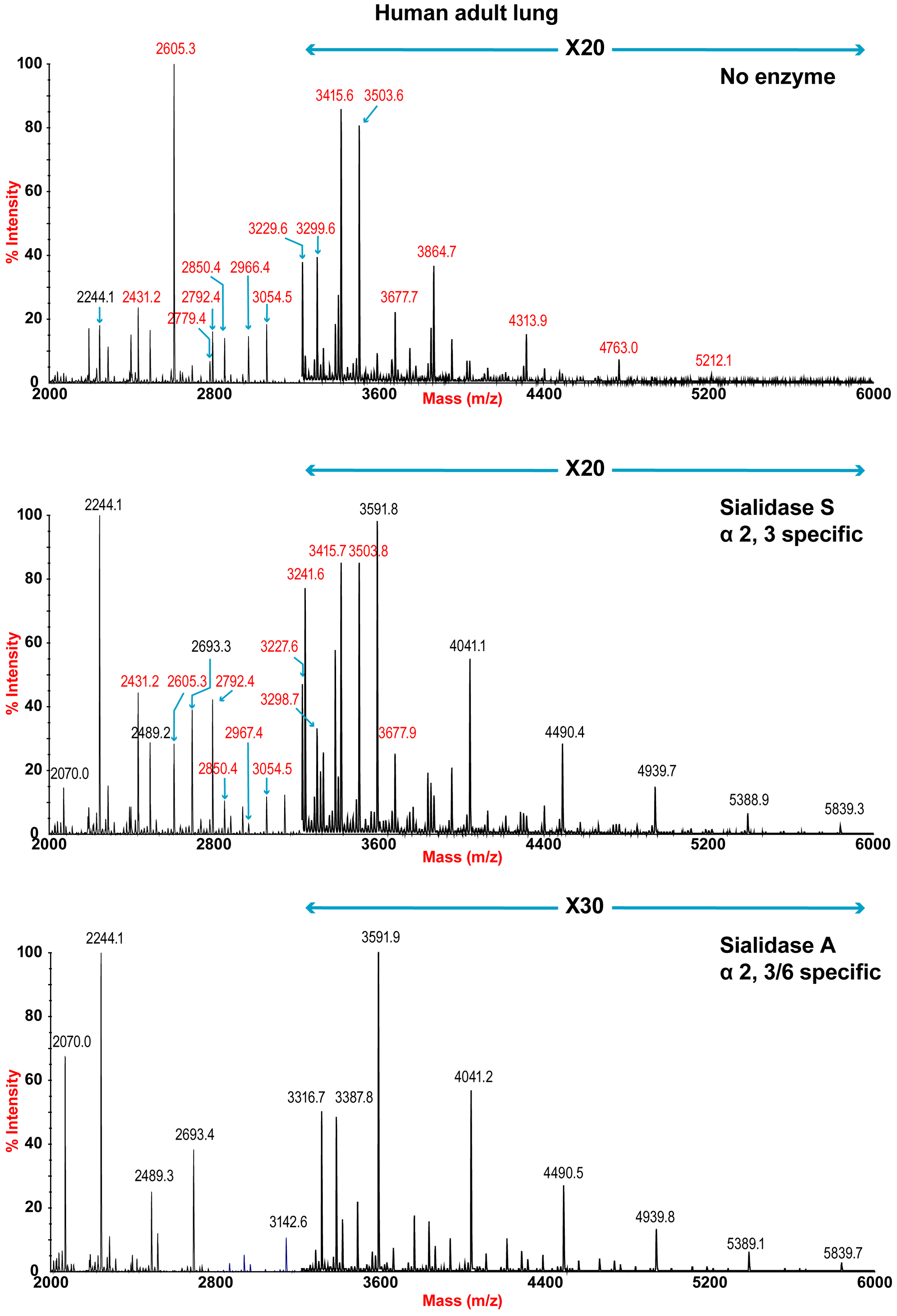 N-glycan profile of lung following sialidase treatment.