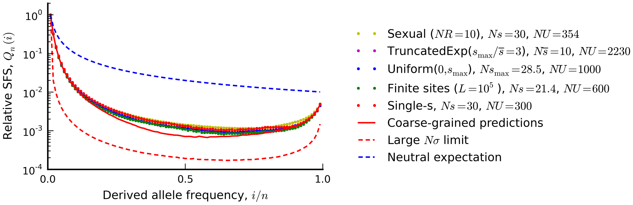 "The silent site frequency spectrum from <em class=""ref"">Figure 4</em> (red dots) and forward-time simulations of three equivalent populations predicted from our coarse-grained theory."