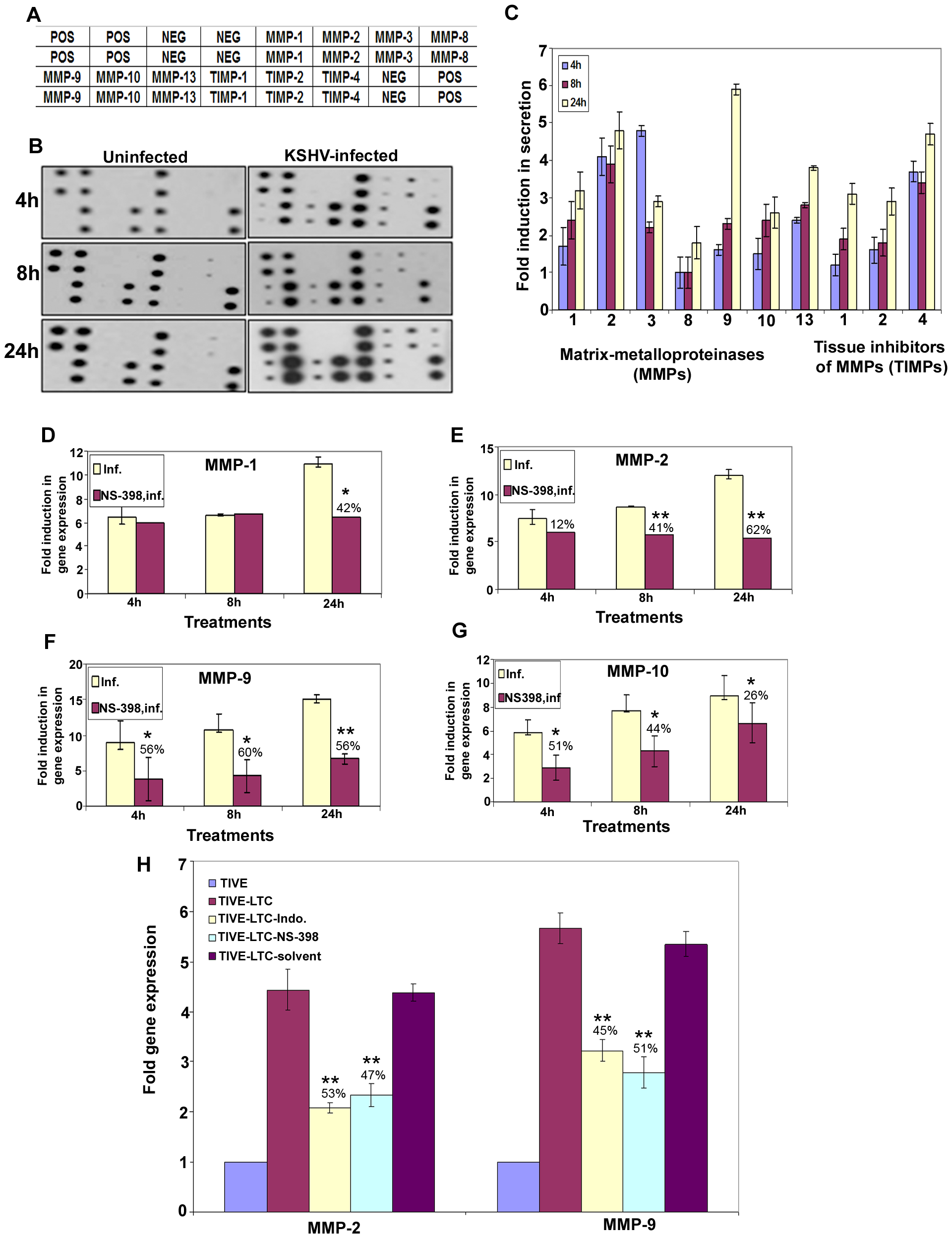 KSHV induced COX-2 regulates MMP gene expression in HMVEC-d as well as latently infected endothelial cells.