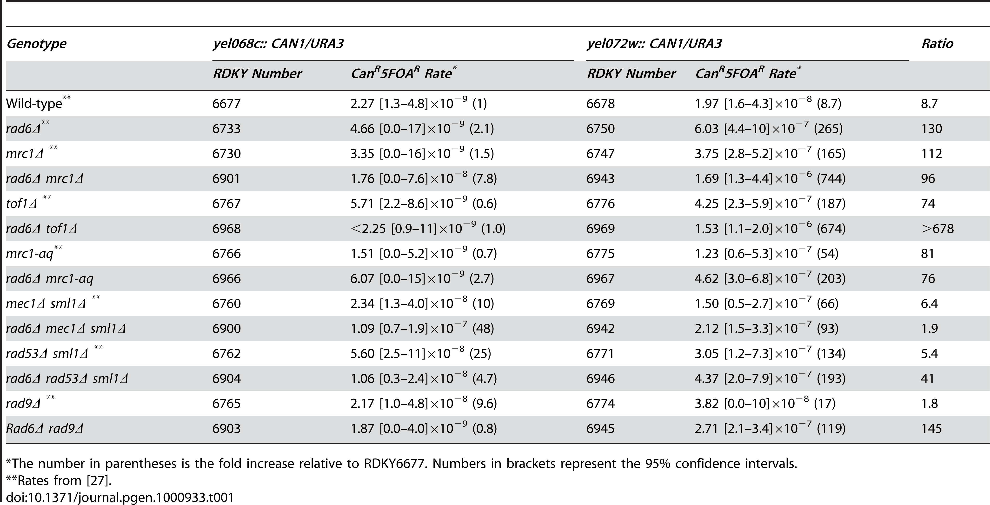 Effects of combining <i>RAD6</i> and checkpoint gene mutations on duplication-mediated GCRs.