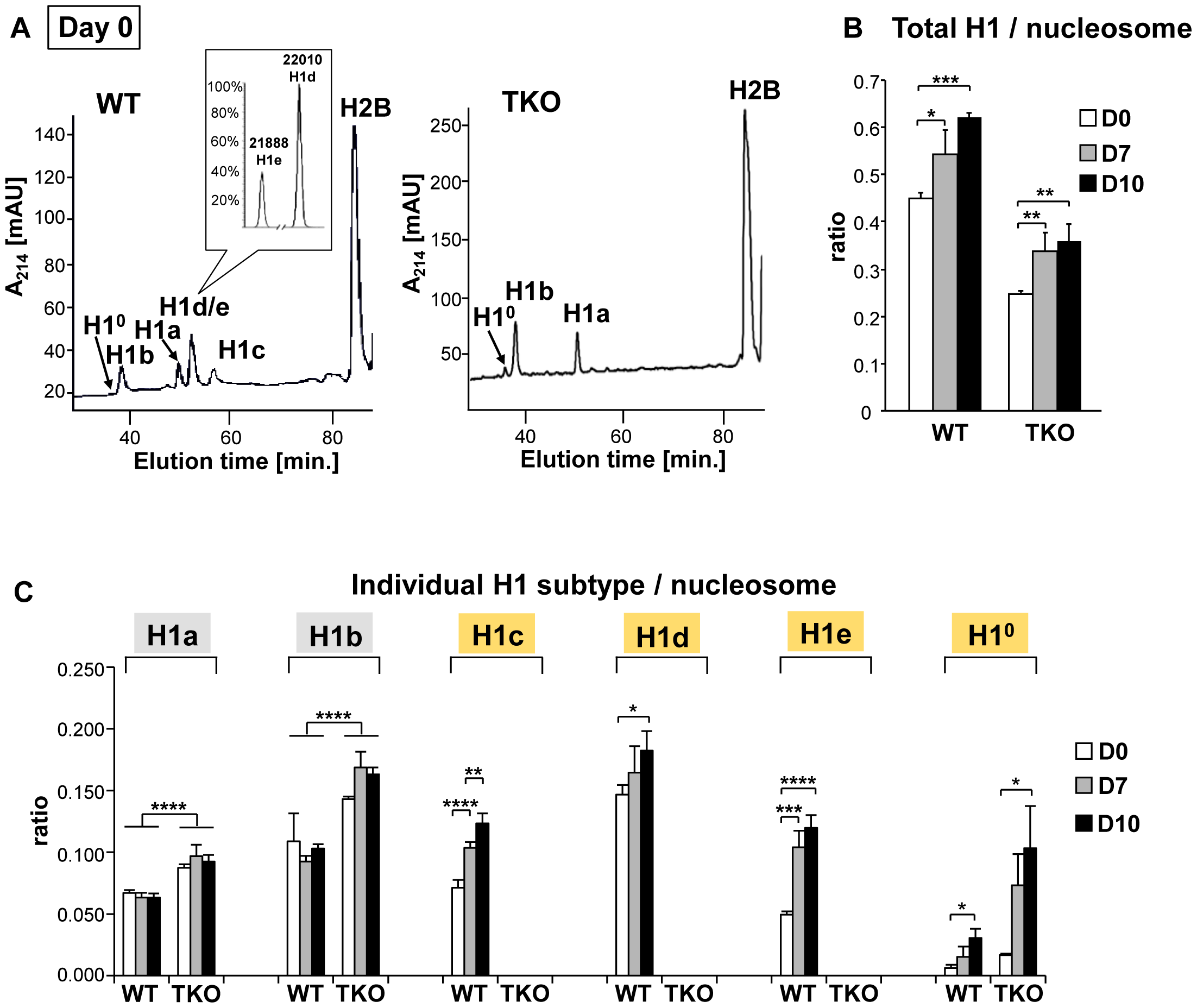 Expression profiles of linker histones in WT and H1 TKO cultures during EB differentiation.
