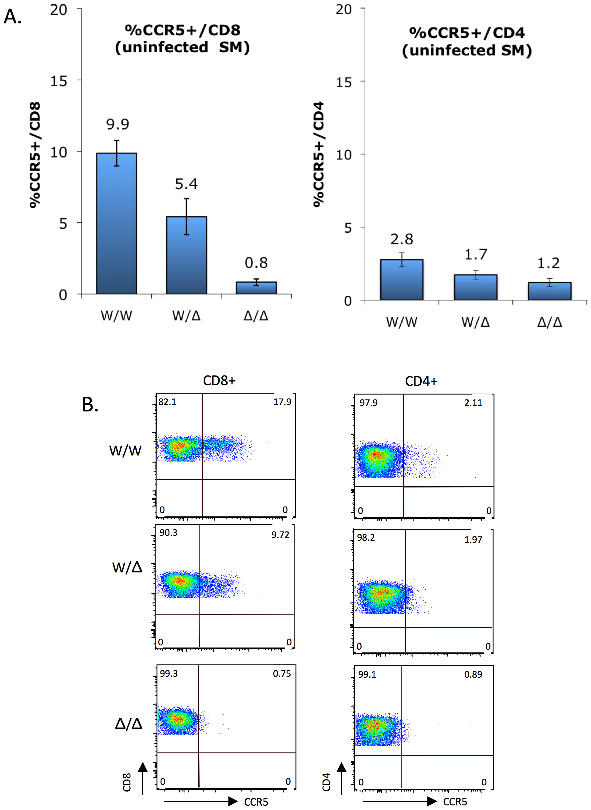 CCR5 surface expression on sooty mangabey CD4+ and CD8+ T cells <i>ex vivo</i>.