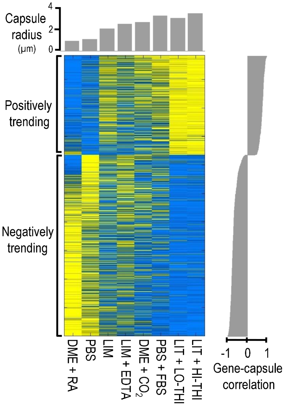 The transcriptional signature of capsule induction.