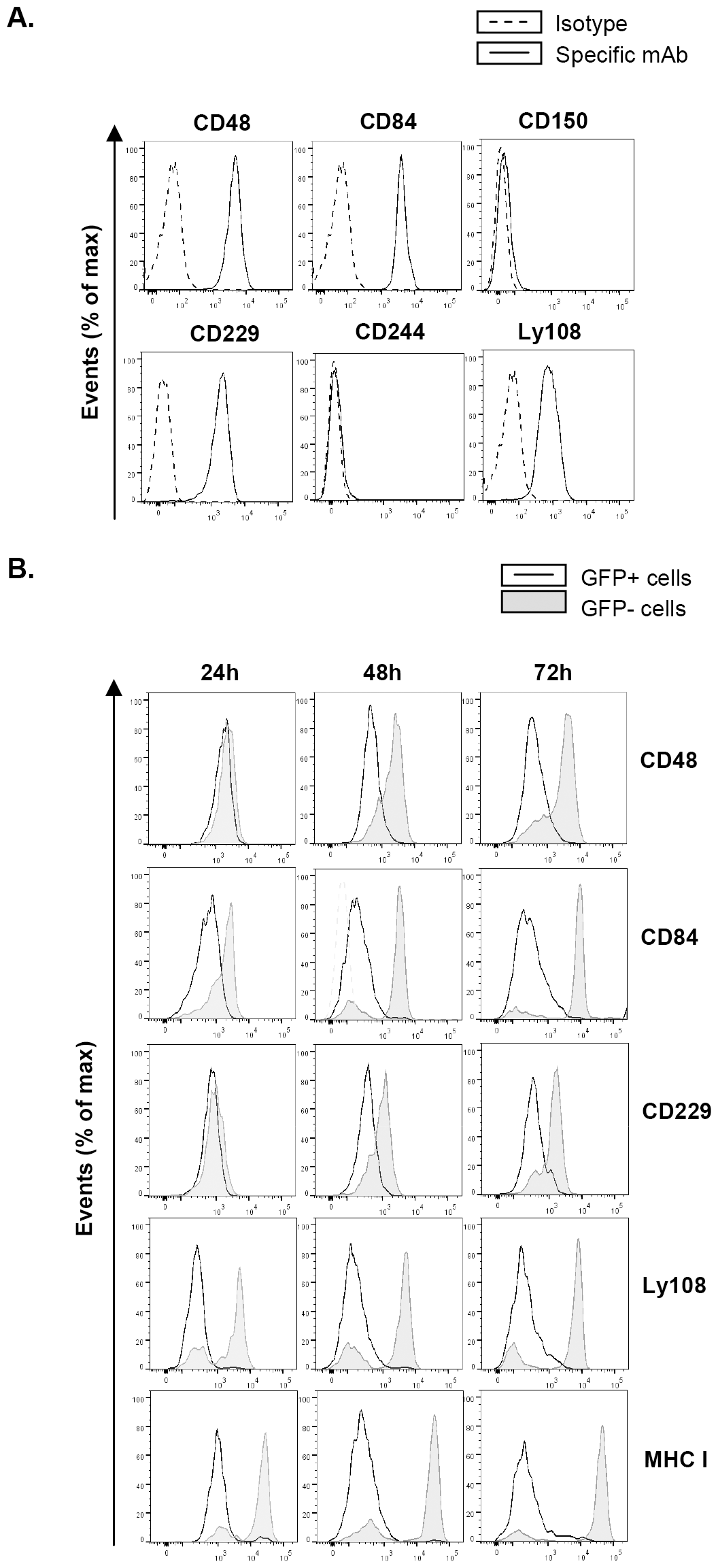 MCMV infection leads to reduced expression of SLAM receptors on the macrophage surface.