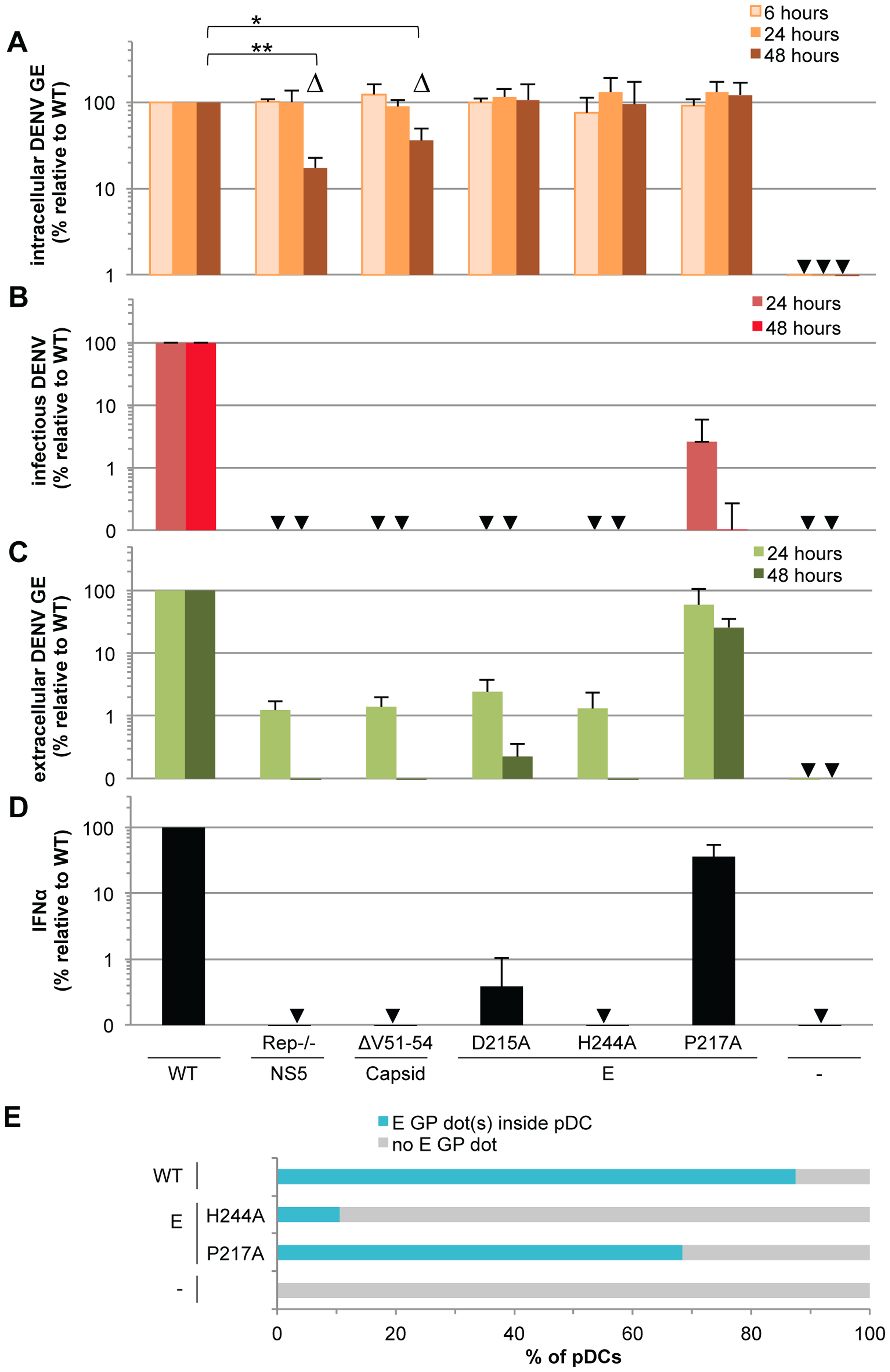 Viral functions required for pDC IFNα production triggered by DENV infected cells.
