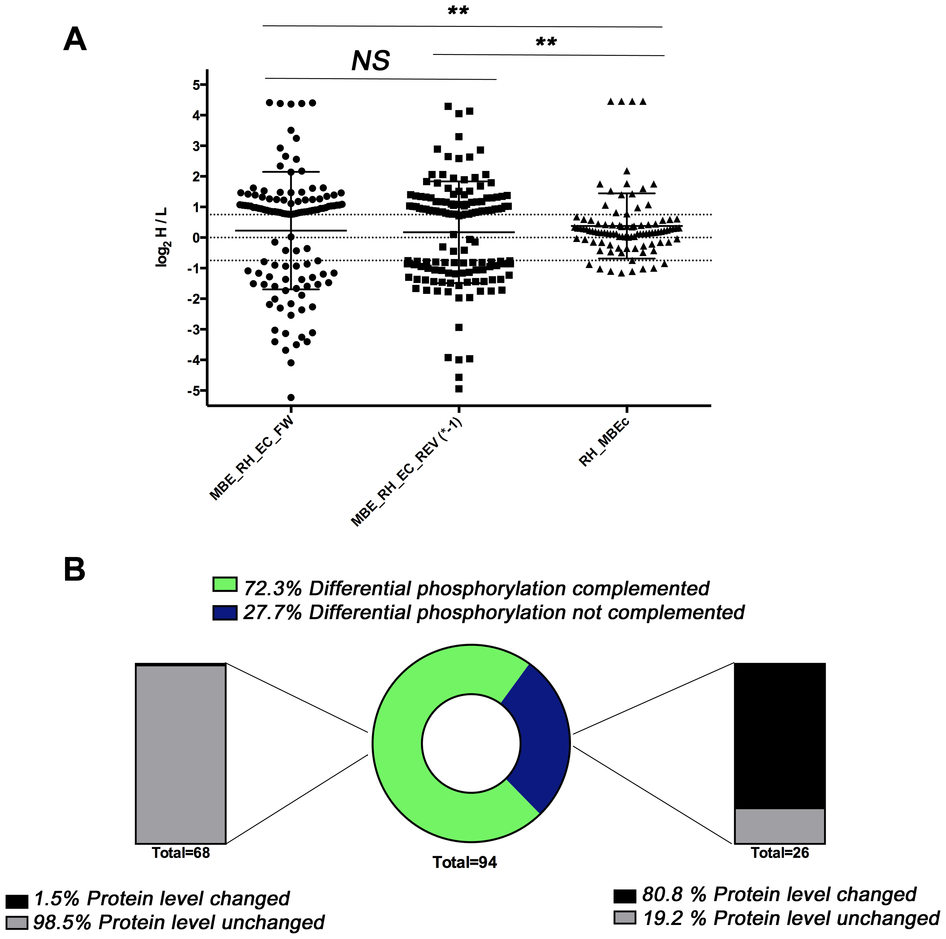 Phosphoproteome and proteome analysis of MBE1.1 complemented with wild type TgCDPK3.