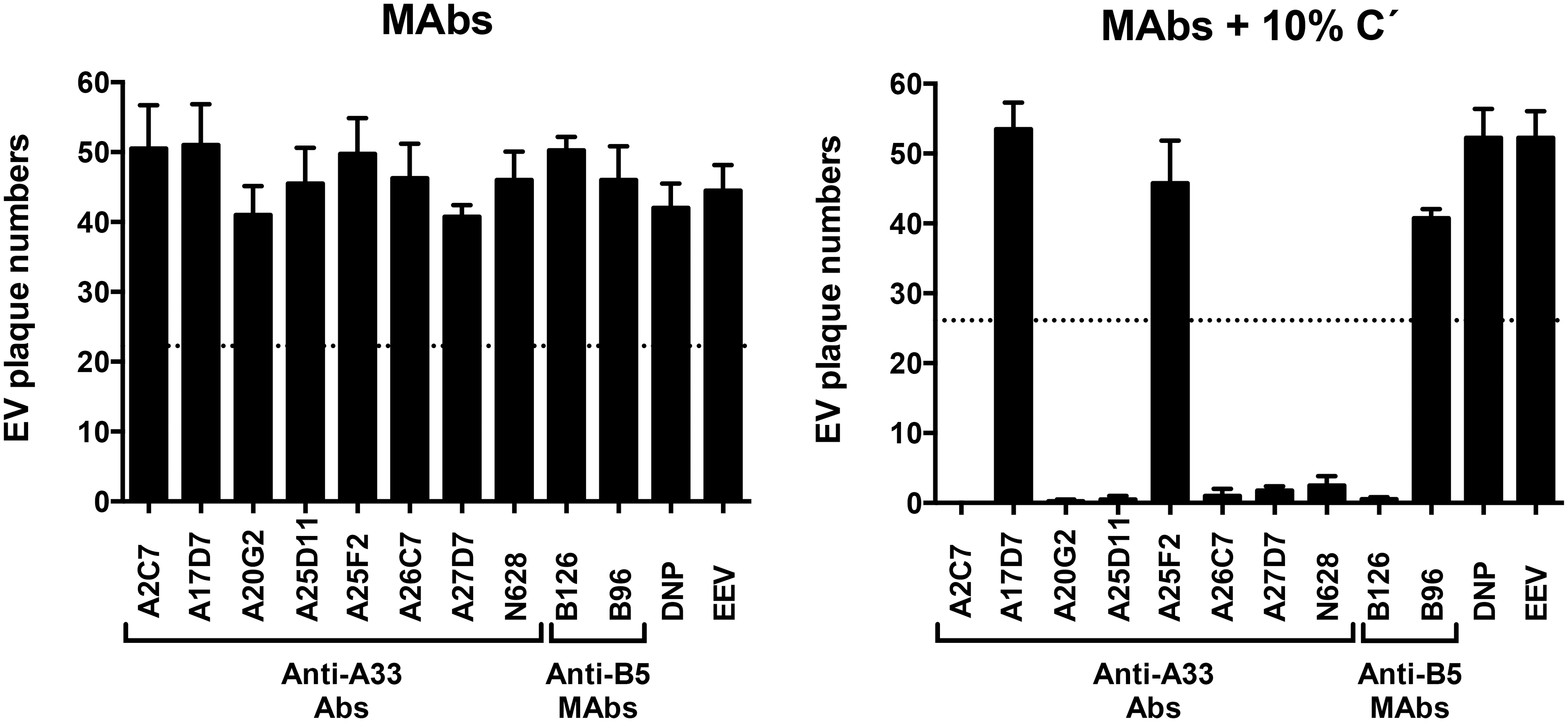 Complement and isotype dependence of anti-A33 MAb neutralization of VACV EEV.