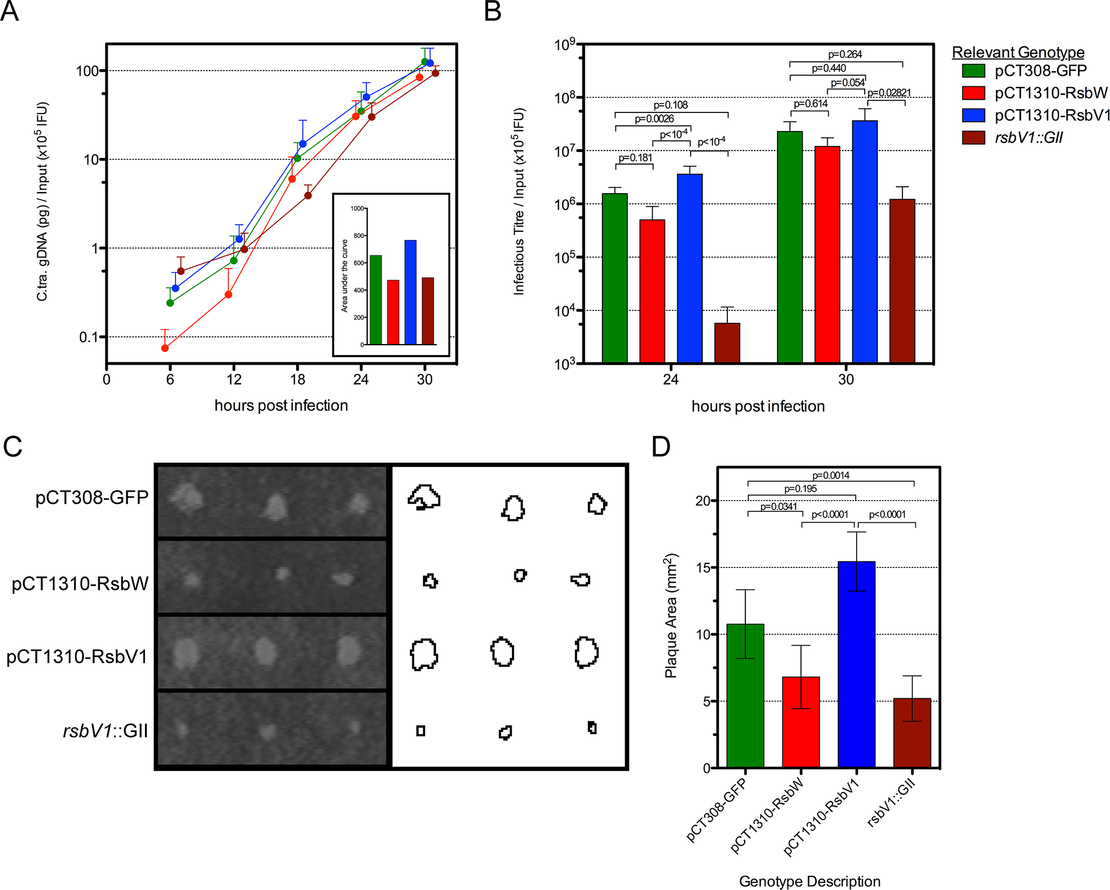 The effect of <i>rsbW</i> and <i>rsbV1</i> expression on genomic replication and development of infectious progeny.