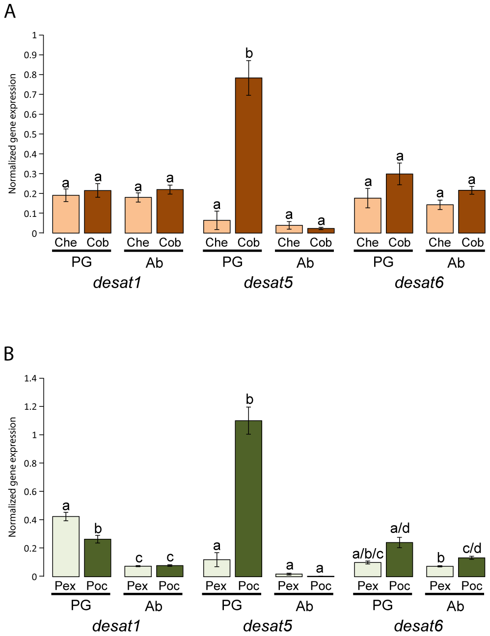 Gene expression of <i>desat1</i>, <i>desat5</i>, and <i>desat6</i> in the pheromone gland and abdomen of virgin females in <i>Ctenopseustis obliquana</i>, <i>C. herana</i>, <i>P. excessana</i>, and <i>P. octo</i> relative to housekeeper genes.