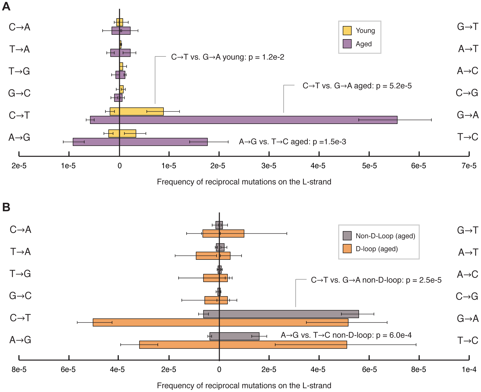 Transition mutations show a pronounced strand bias in their occurrence.