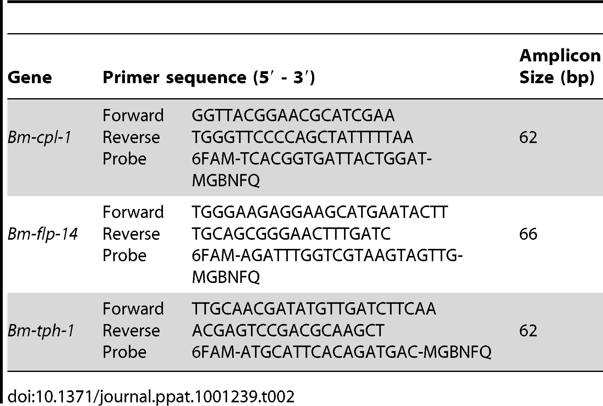 Primer and TaqMan probe sequences for RT-qPCR experiment.
