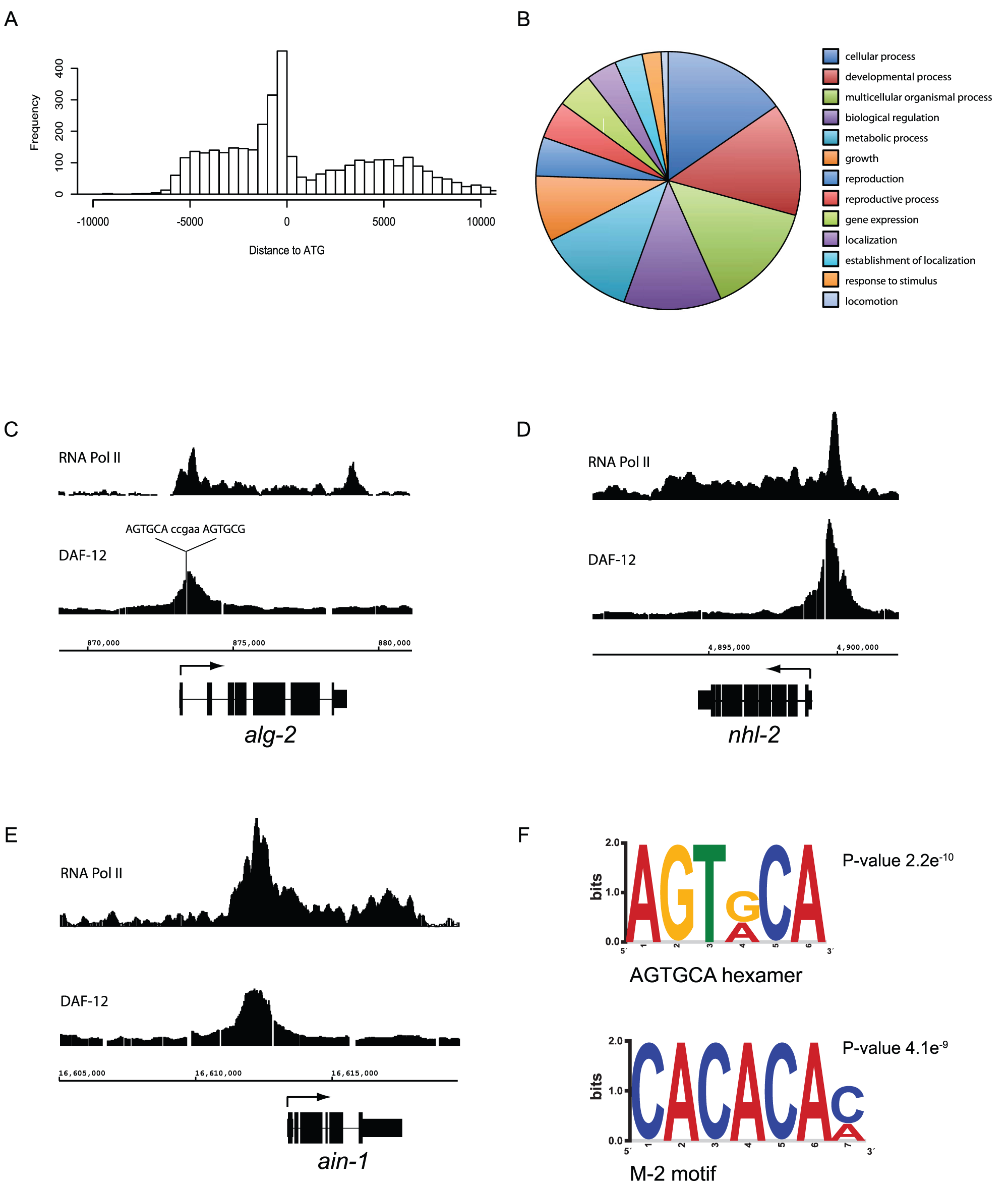 Analysis of DAF-12 binding sites.