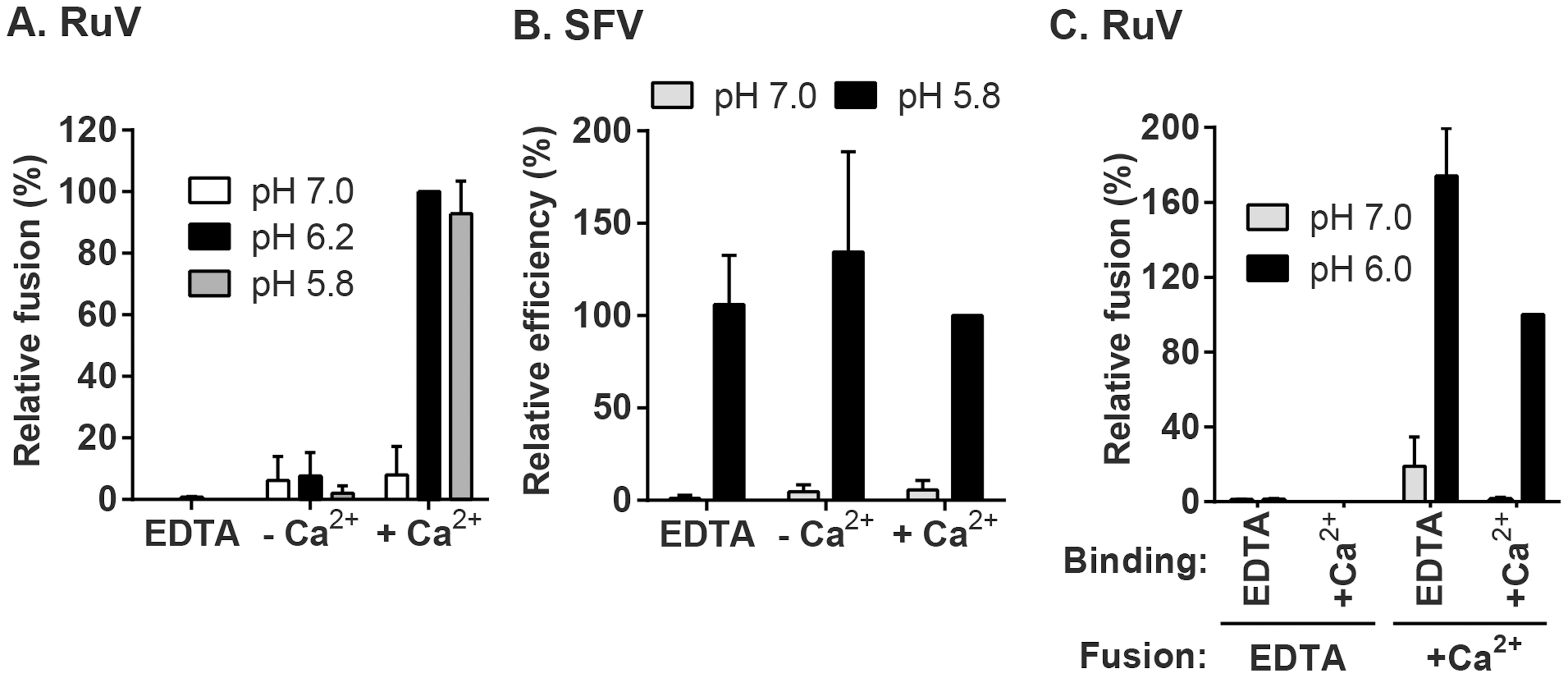 Effect of Ca<sup>2+</sup> on RuV fusion.