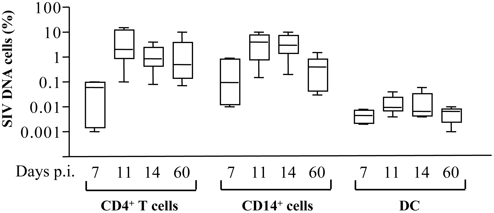 Frequency of SIV-DNA<sup>+</sup> cells in SIV-infected macaques.
