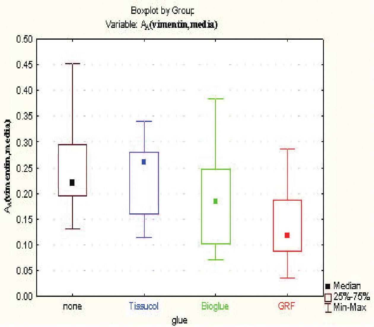 Exprese vimentinu ve stěně aorty po aplikaci jednotlivých lepidel