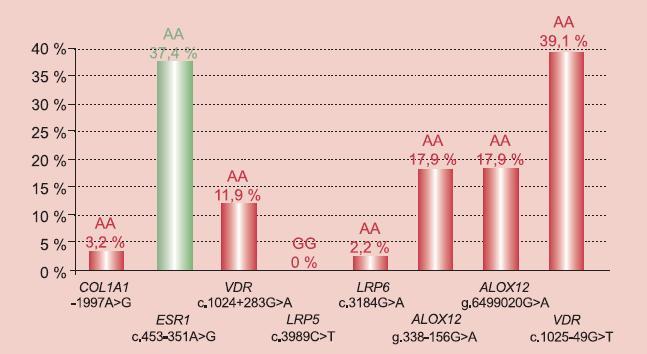 Výskyt rizikových (červeně) a protektivních (zeleně) genotypů v souboru.