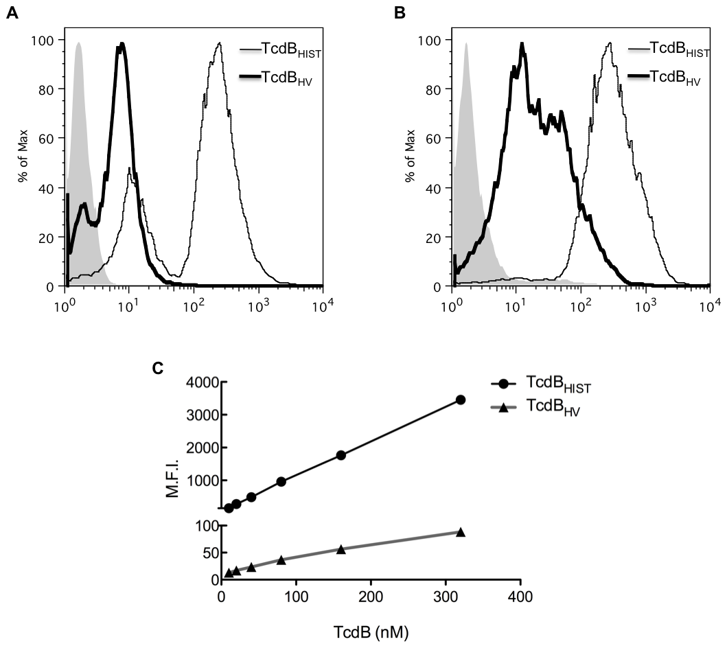 Flow-based analysis of cell binding.