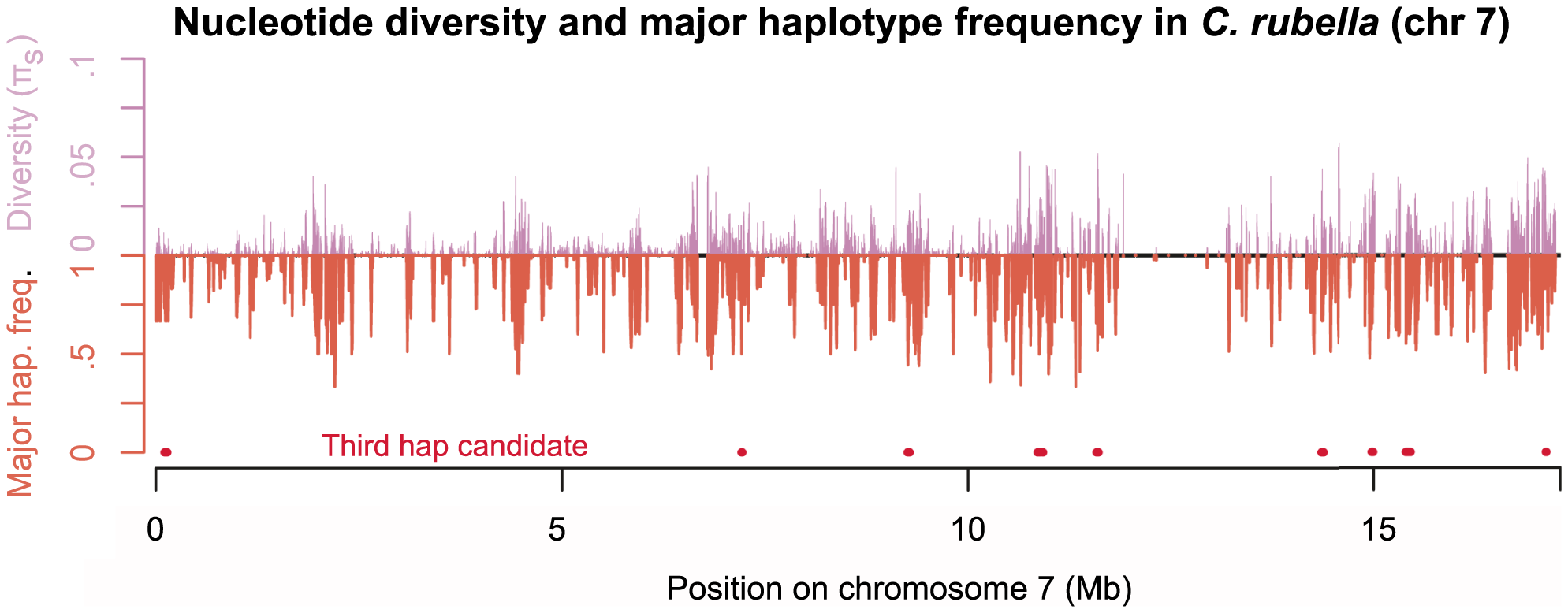 Diversity across chromosome seven in <i>C. rubella</i>.
