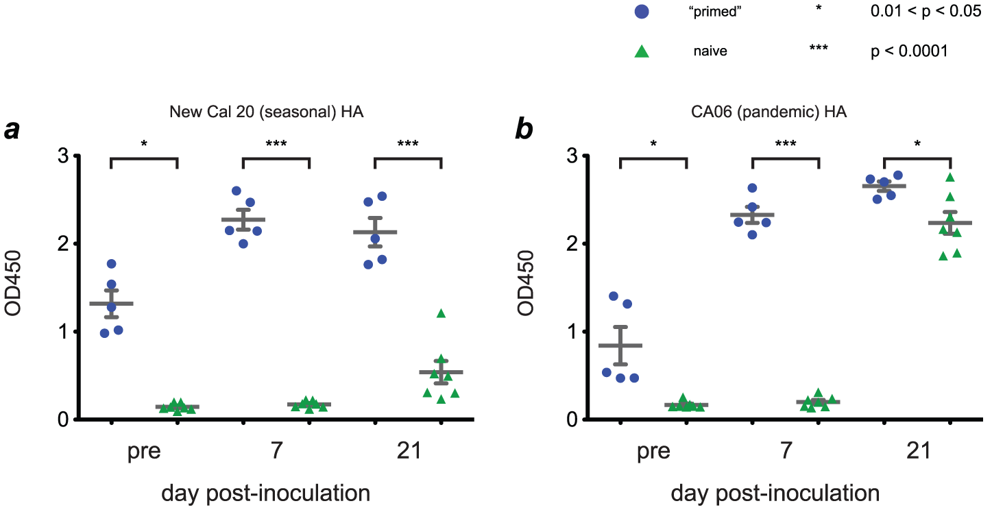 Infection with seasonal influenza viruses induces variable levels of antibody capable of binding H1N1pdm antigens.