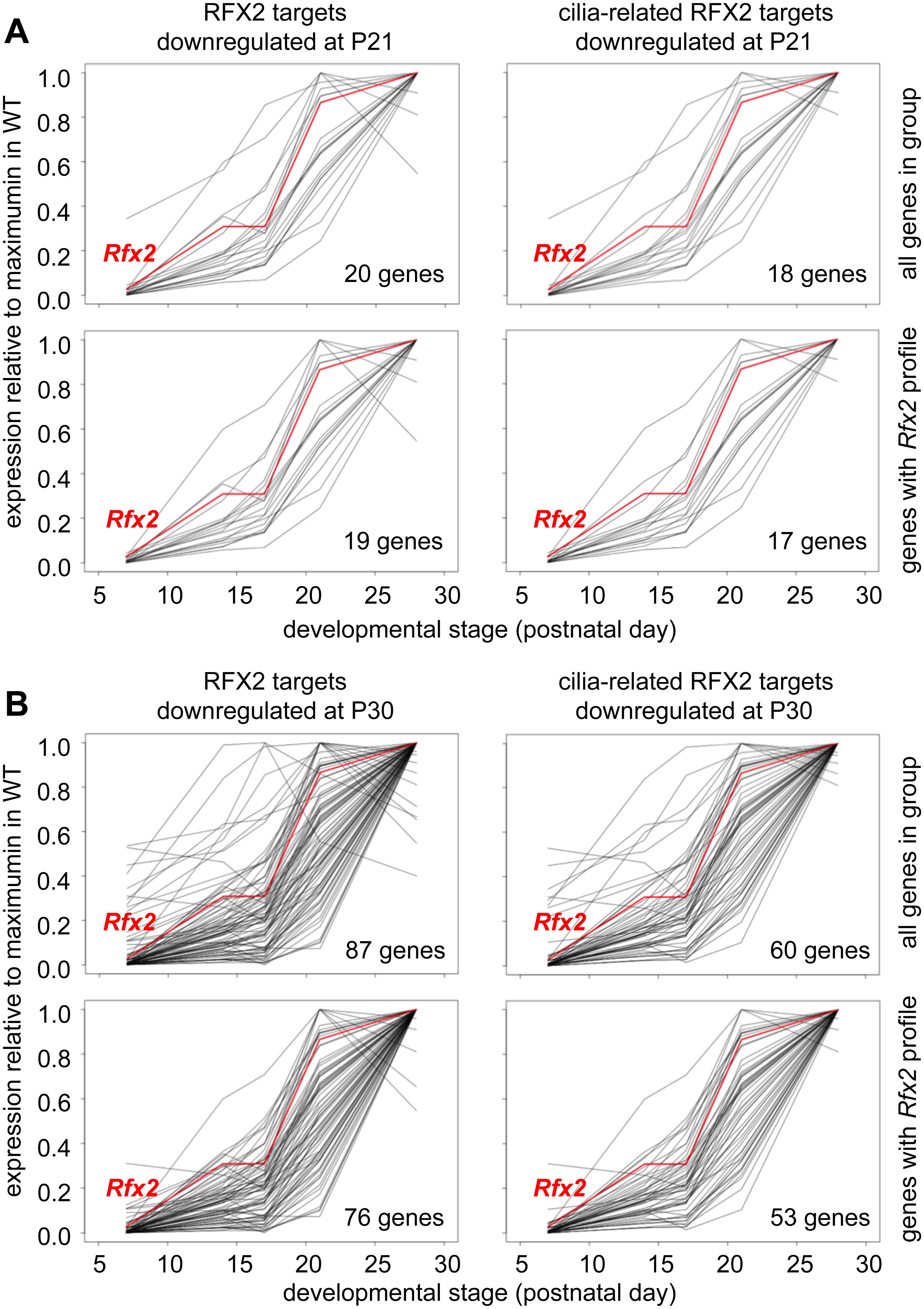Developmental expression profiles of RFX2 target genes.