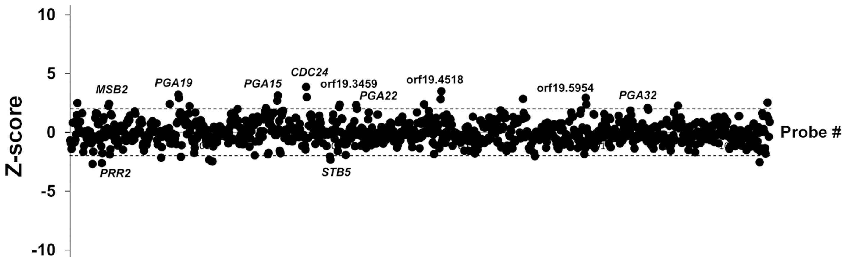 Competitive strain occupancy profiling in a multi-strain biofilm.