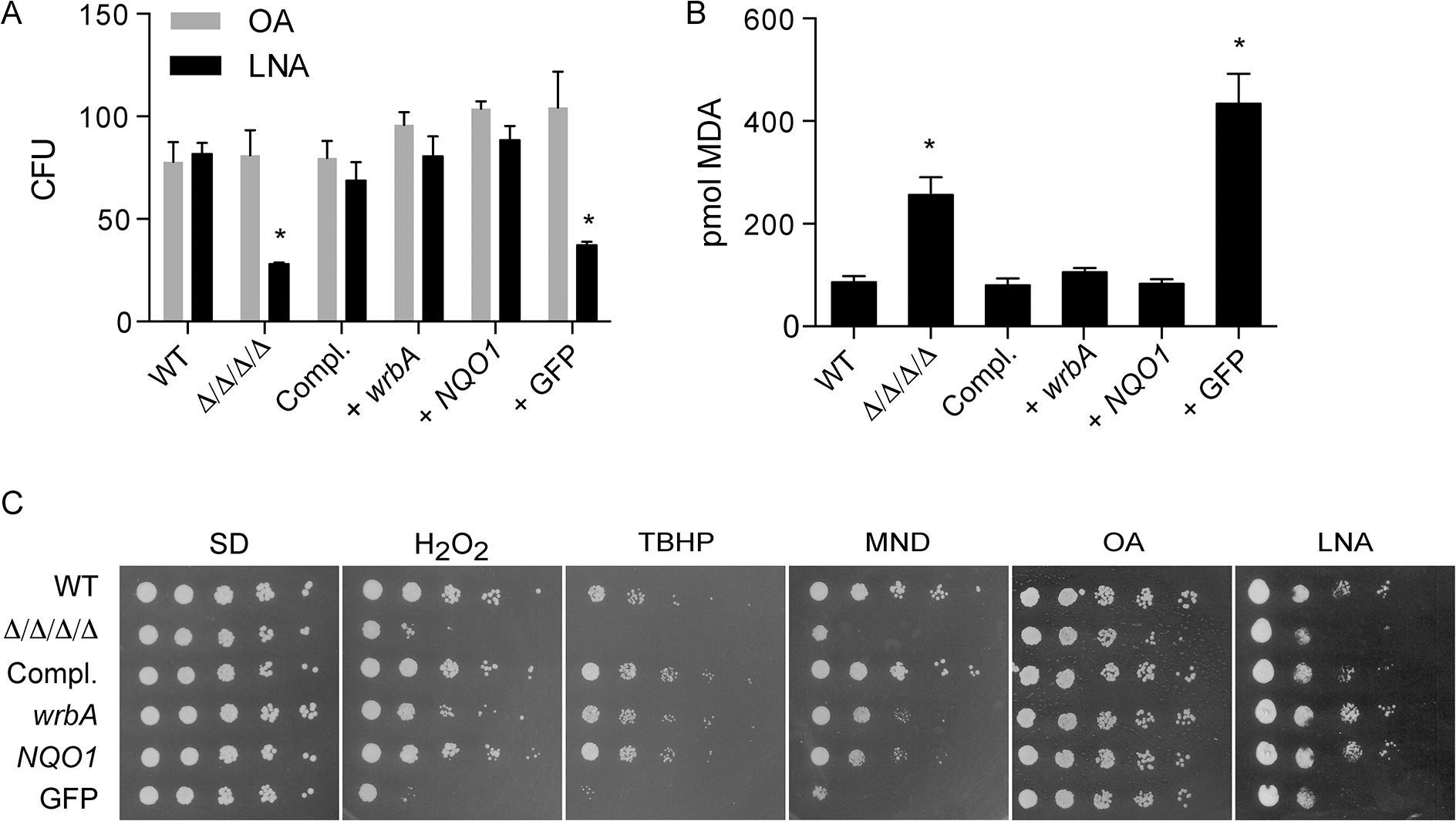 Heterologous expression of <i>E</i>. <i>coli wrbA</i> or rat <i>NQO1</i> rescues the sensitivity of Δ/Δ/Δ/Δ mutant to oxidants.
