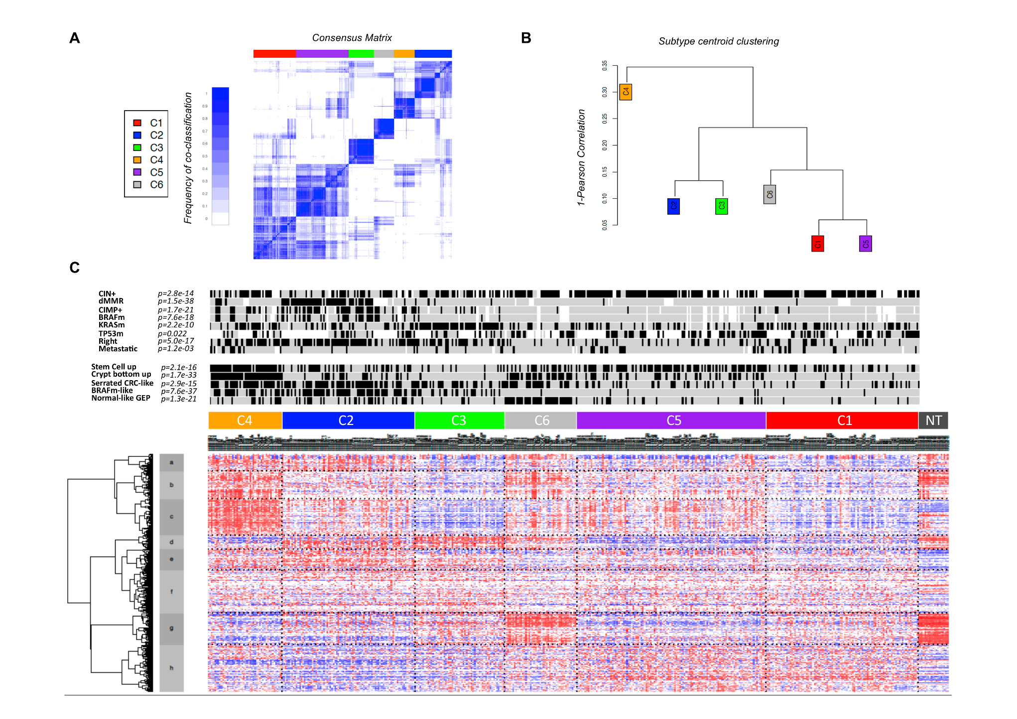Unsupervised gene expression analysis of the discovery set of 443 colon cancers.