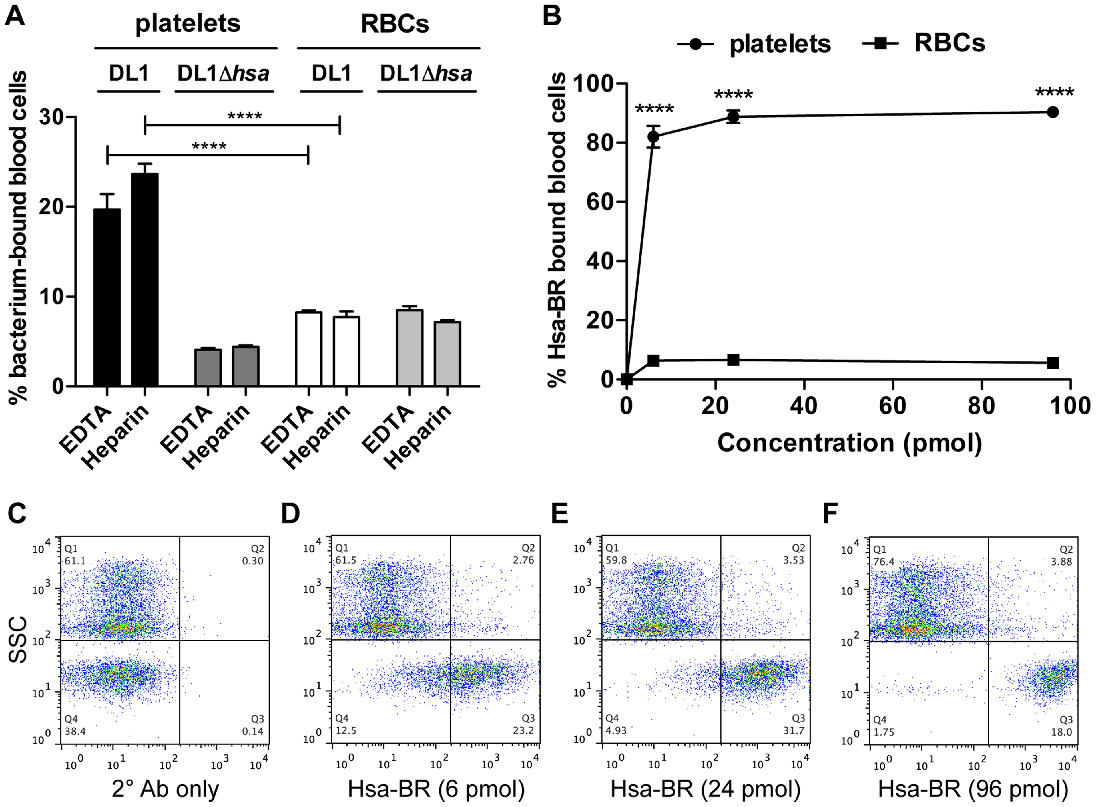 Divalent cation effect on bacterial binding and preferential recognition of platelets over RBCs by Hsa-BR in whole blood.