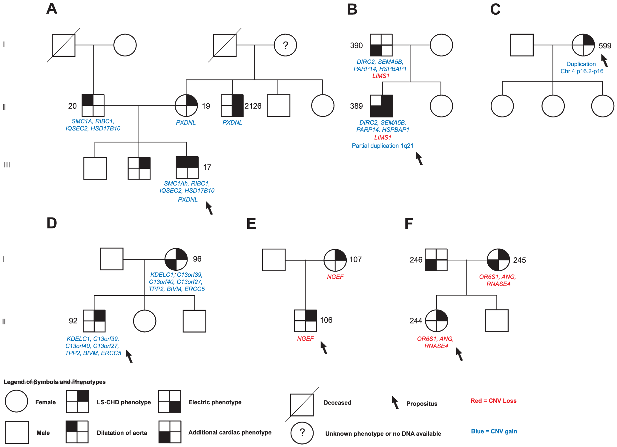 Selected segregation patterns of CNVs in LS-CHD pedigrees.