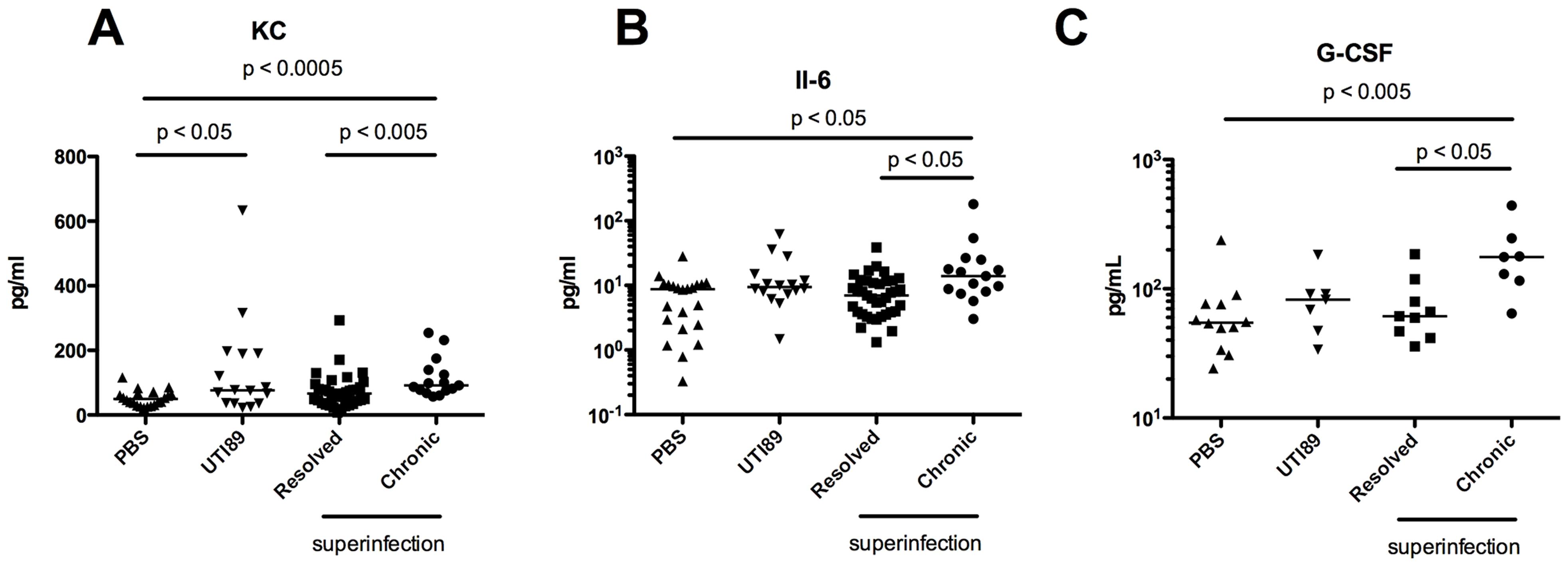 Serum cytokine signature of C57BL/6J mice with persistent bacteriuria.