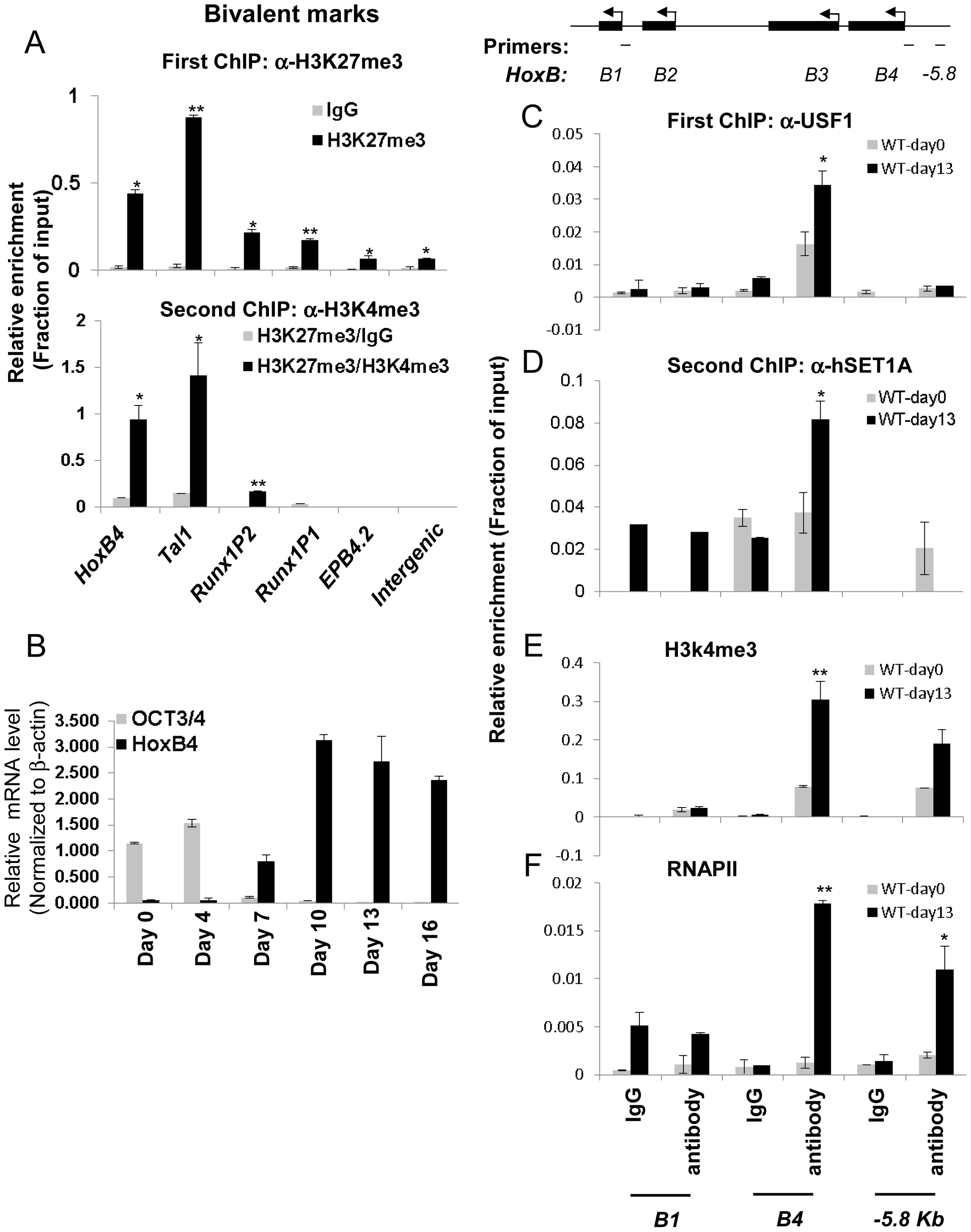 Co-localization of USF1 and the hSET1A complex correlates with the activation of the HSC-specific <i>HoxB4</i> gene during hematopoietic differentiation of ESCs.