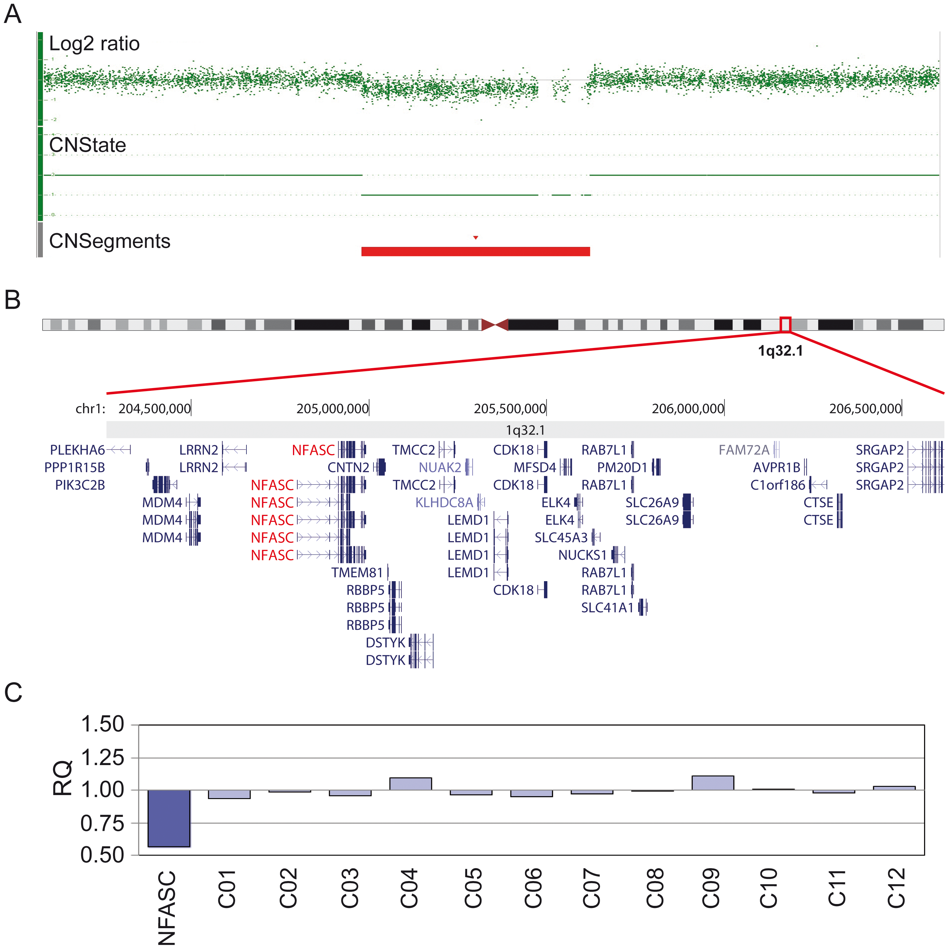 Molecular karyotyping and MLPA confirmation of identified loci.