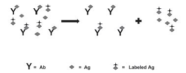 Fig. 3. Use CE to separate and detect bound vs. non-bound labeled Ag