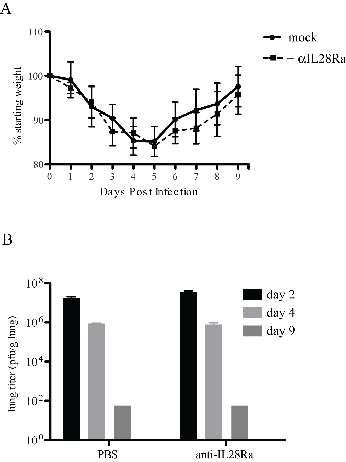 IFNL receptor antibody treatment of IFNAR1−/− mice.