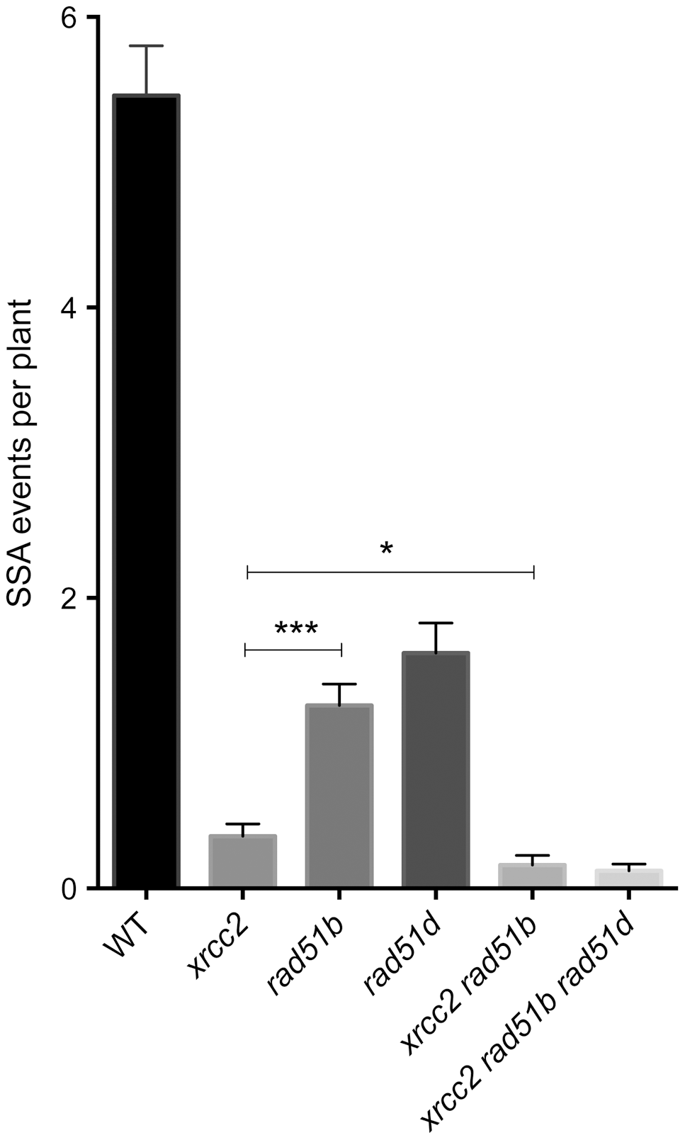Individual and combined effects of <i>xrcc2, rad51b</i> and <i>rad51d</i> on spontaneous DGU.US recombination.