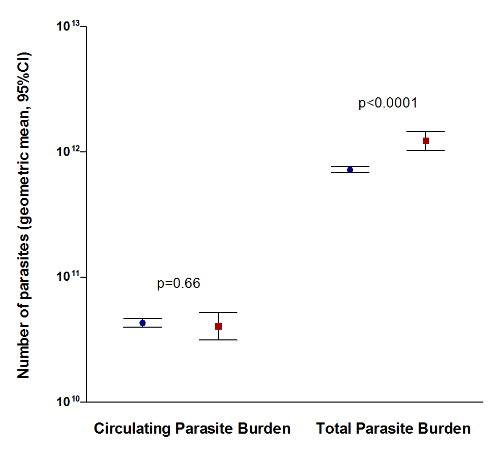 Comparison of circulating parasite burden and total parasite burden between surviving (blue circles, n=3,070) and fatal (red squares, n=327) cases.