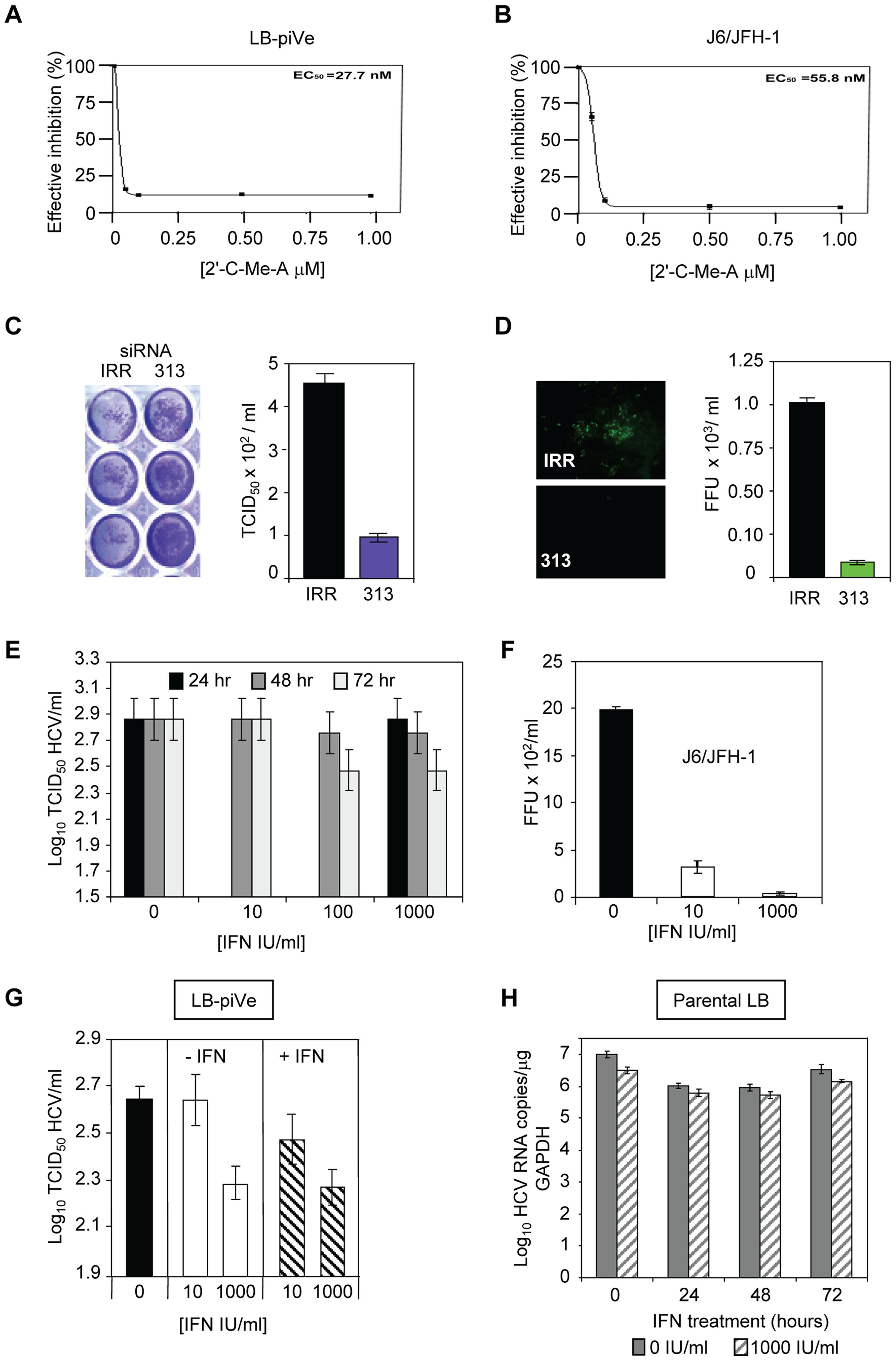 Inhibition of HCV by antivirals.