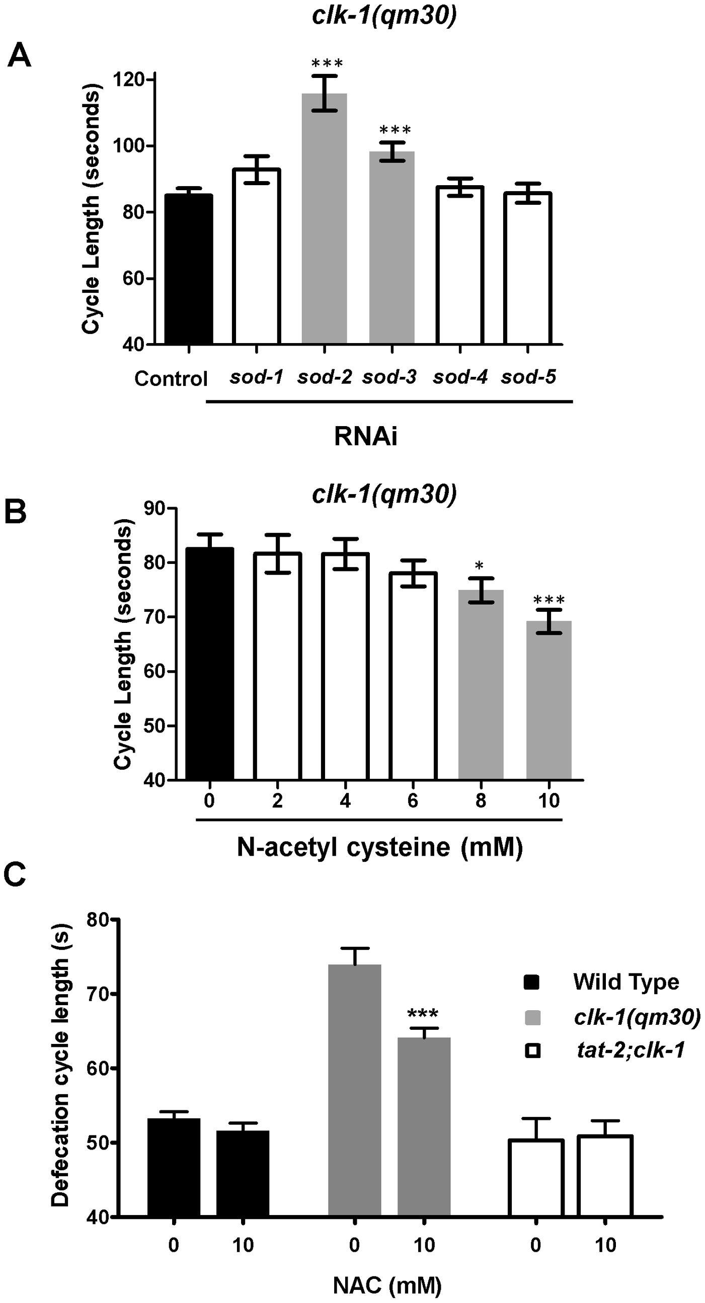 <i>clk-1</i> mutants are sensitive to alterations in ROS metabolism.