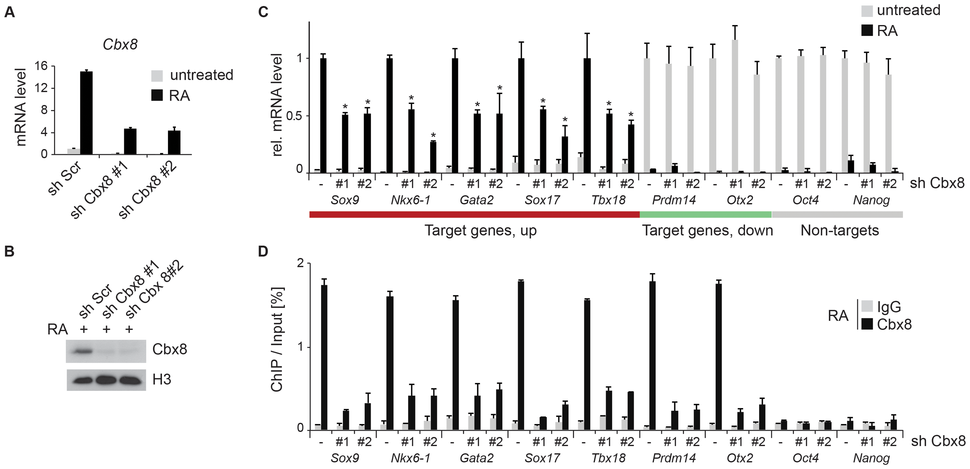 Knockdown of Cbx8 reduces transcription of activated target genes.