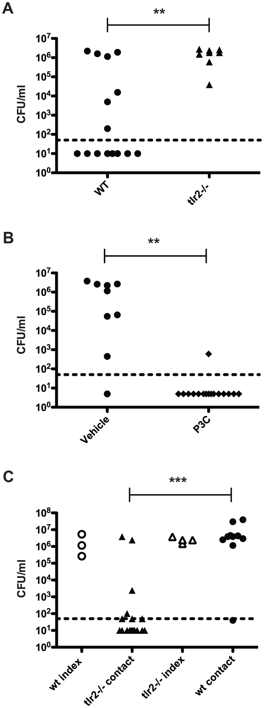 TLR2 stimulation limits pneumococcal transmission.