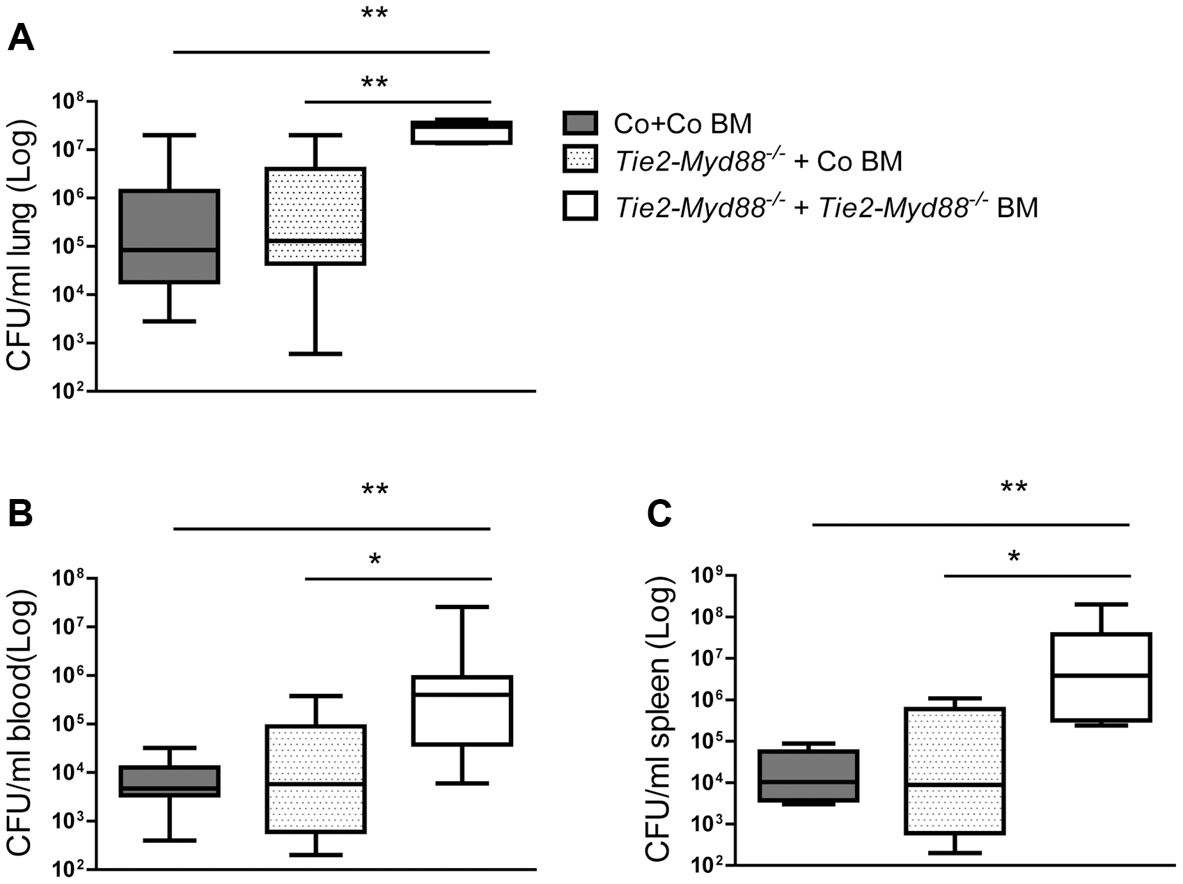 The absence of MyD88 in the hematopoietic compartment determines the impaired antibacterial defense of Tie2-<i>Myd88<sup>−/−</sup></i> mice.