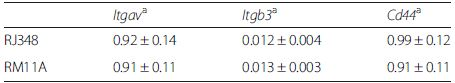 <i>Itgav, Itgb3</i> and <i>Cd44</i> expression in mammary tumor