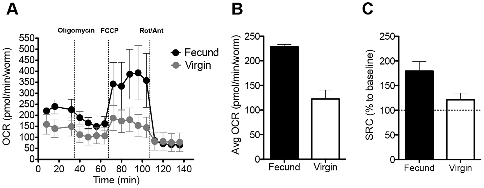 Fecund female schistosomes have high mitochondrial OCR.